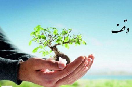 خبرهای خوب در حوزه زراعت با تشکیل زنجیرههای تولید در راه است