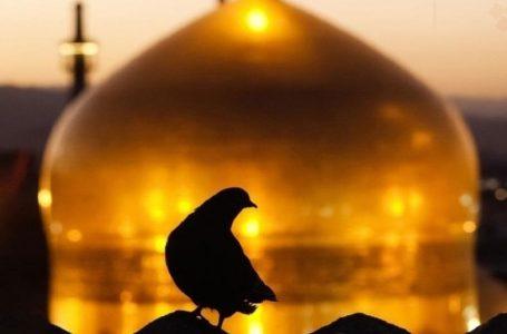 سفارش امام رضا(ع) به وقف اموال به عنوان عاملی برای مدیریت معنوی آنها
