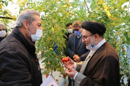 بالغبر ۹۵ درصد بذور کشاورزی از خارج کشور وارد میشود/ همکاری اوقاف با دانشگاه شاهد در جهت بومیسازی تولید بذر